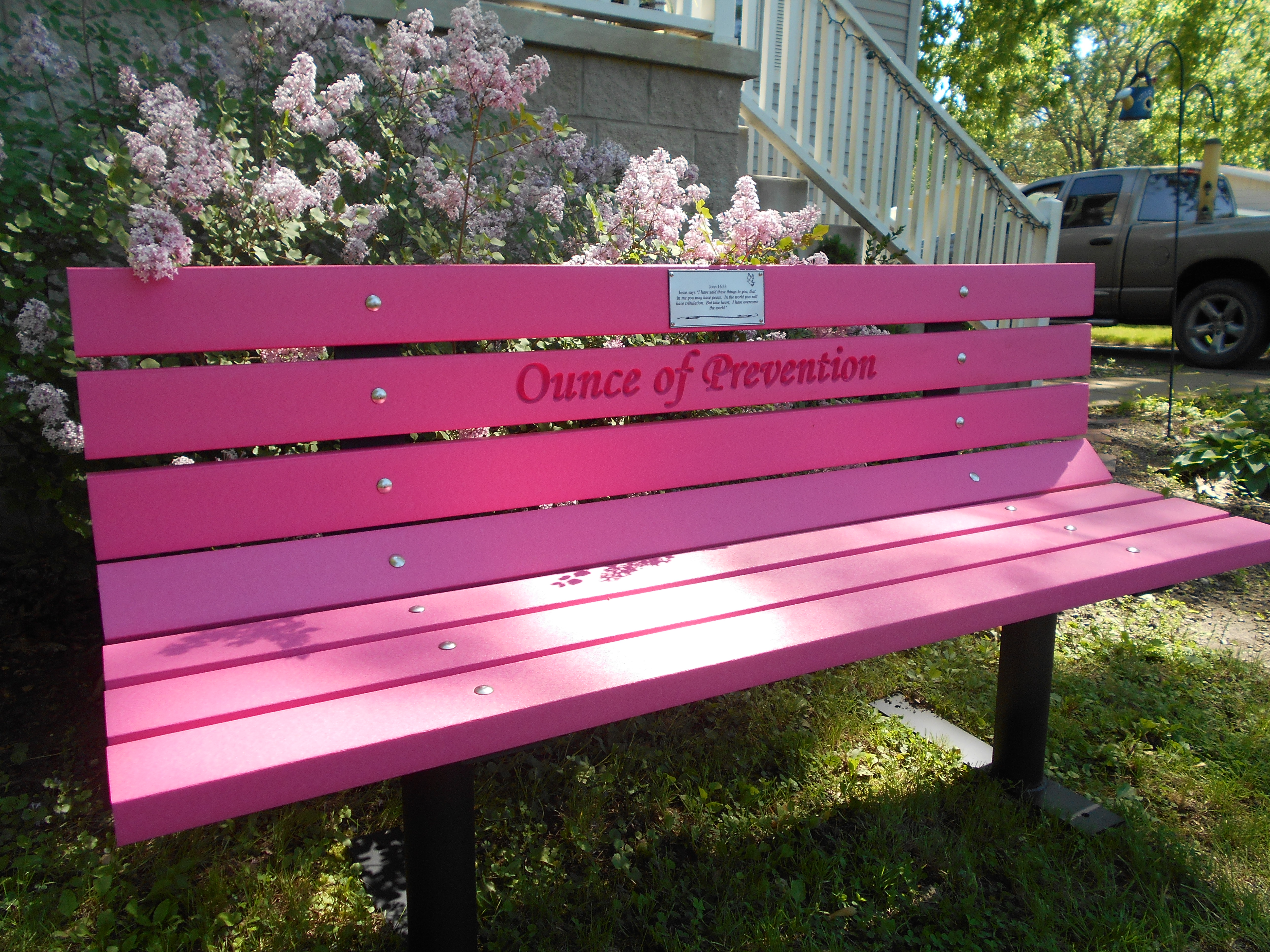 "Vibrant Colored Park Bench ""Pink"""