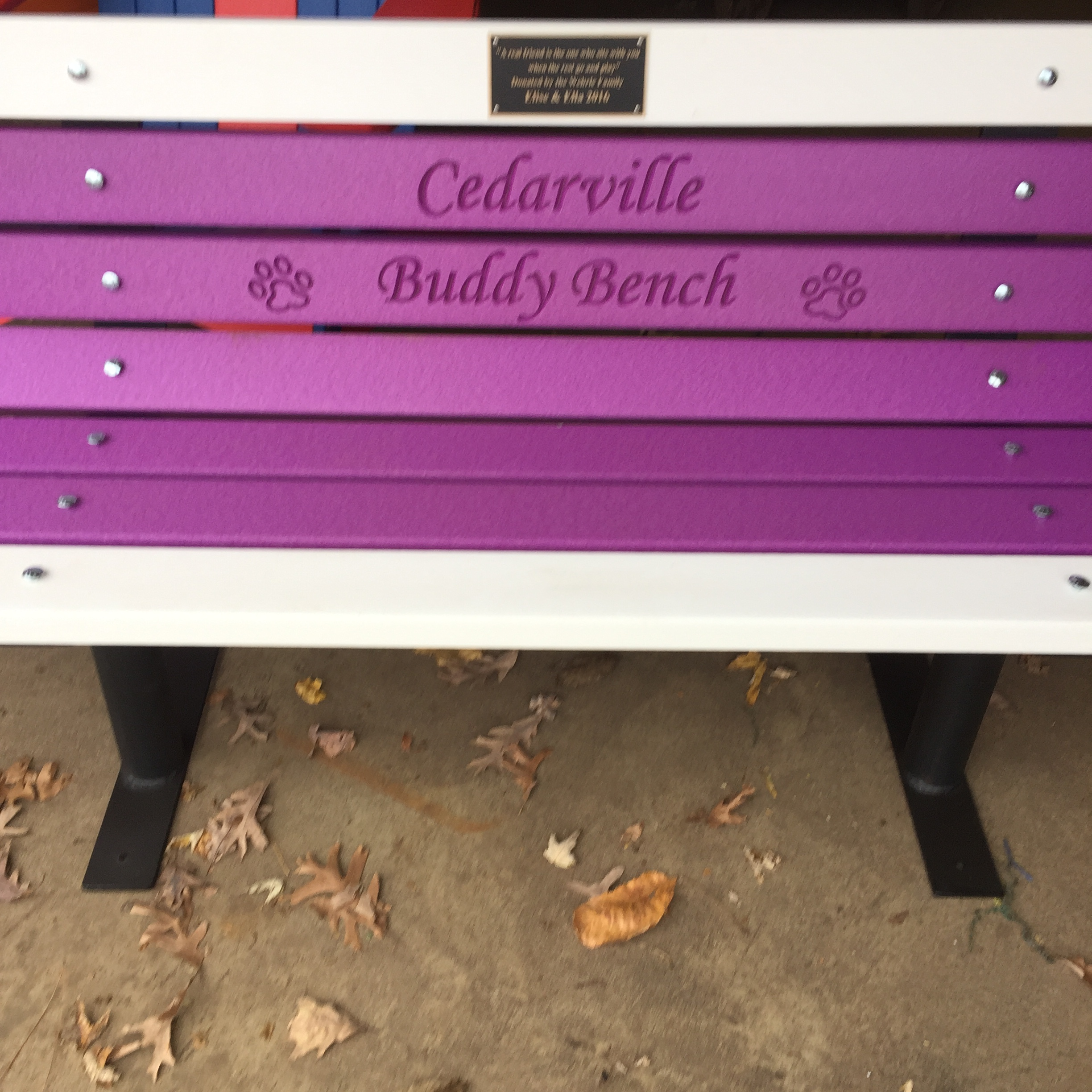 Buddy Bench Your School colors